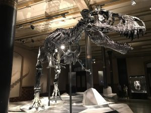 Any child will have fun in the Mesozoic Era, with a one way ticket back to modern Pittsburgh.