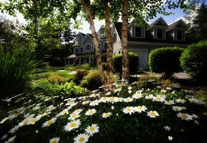 Stage your home to sell from the front yard