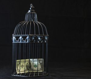 A dollar bill in the cage