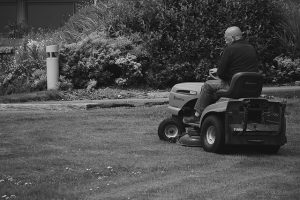A man riding a lawn mower in the garden