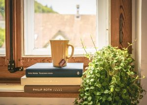 Books, plant and a cup on a window