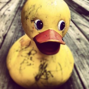 old rubber duck