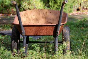 Wheelbarrowsin a garden